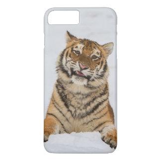 Tigerunterhaltung iPhone 7 Plus Hülle