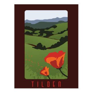 Tilden regionale Park-Postkarte Postkarte