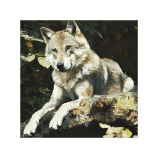 Timberwolf-Malerei Leinwanddruck