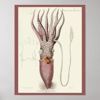 Tintenfisch-lila Kopffüßer-Seegeschöpf-Kunst-Druck Poster
