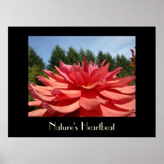 Toile de fleur de dahlia d'impression d'art du bat affiche