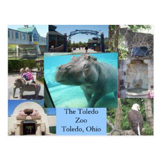 Toledo-Zoo Postkarte