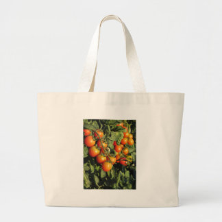 Tomate-Pflanzen, die im Garten wachsen Jumbo Stoffbeutel