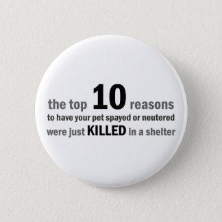 Top 10 Gründe Spay oder zu neutralisieren Runder Button 5,7 Cm