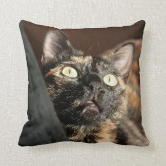 tortie cat pillow kissen