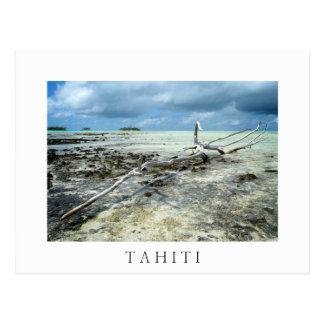Totes Holz Tahiiti in der weißen Textpostkarte Postkarte