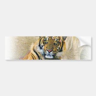 toutes occasions, tigre Cub_ Adhésifs Pour Voiture