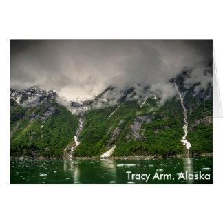 Tracy Arm, Alaska Karte