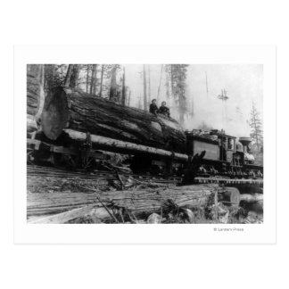 Tragende Männer des Protokollierungs-Zugs und Postkarte
