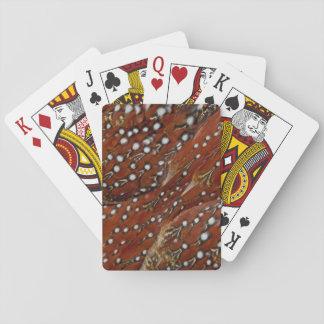 Tragopan Brust versieht Detail mit Federn Spielkarten