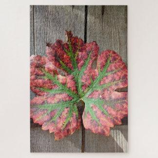 Trauben-Blatt auf einer rustikalen hölzernen Tür
