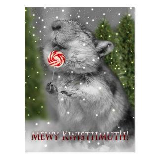 Traum des Gerbils Weihnachts Postkarte