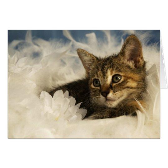 Träumerisches Kätzchen Grußkarte