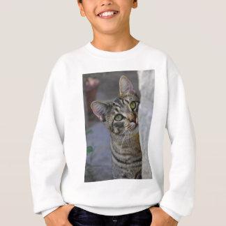 Trauriger Kitty (bengalische Katze) Sweatshirt