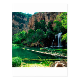 Tree hängende See Glenwood Schlucht Colorado Postkarte