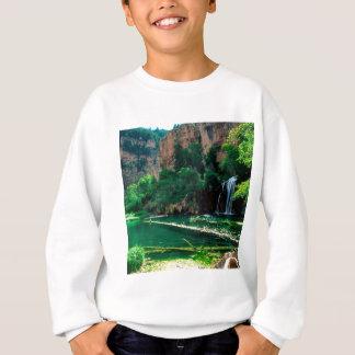Tree hängende See Glenwood Schlucht Colorado Sweatshirt