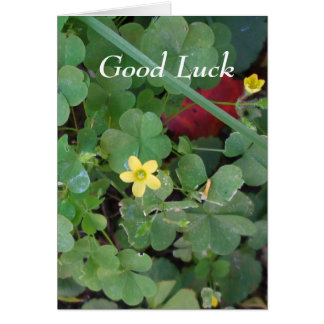 Trèfle de bonne chance pour l'ami carte de vœux