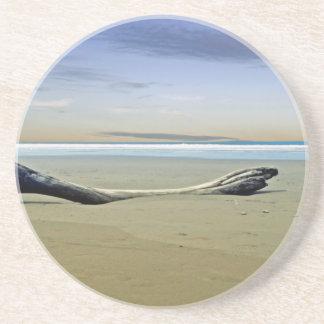 Treibgut auf dem Strand Sandstein Untersetzer