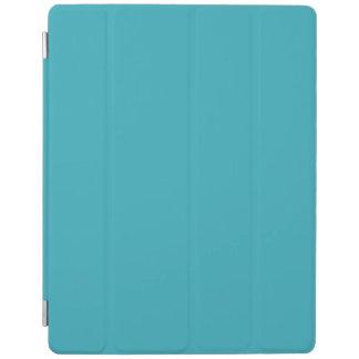 Triboro Blau-Elektrischer Blau-Im Norden iPad Hülle