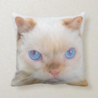 Trident das Katzen-Wurfs-Kissen Kissen