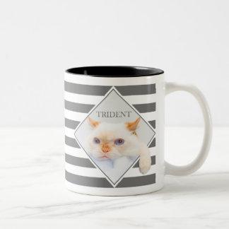 Trident der Katzen-gestreifte Kaffee Mug_01 Zweifarbige Tasse