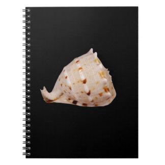 Tritonshorn-Muschel-Foto-Notizbuch Spiral Notizblock