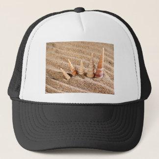 Tritonshorn-Muscheln, die vom Sand hervorstehen Truckerkappe