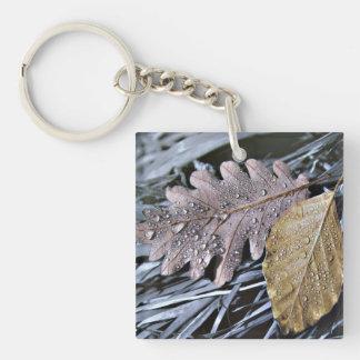 Tropfen auf Herbst-Blätter - AcrylKeychain Schlüsselanhänger
