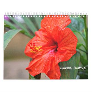 Tropische Blumen Abreißkalender