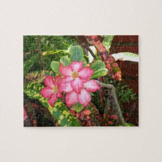 Tropische Blumenfiesta - klares Rosa