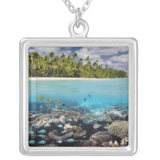 Tropische Lagune in SüdAri Atoll Versilberte Kette