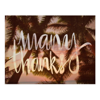 Tropische Palme danken Ihnen Karten