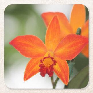 Tropischer Orchideen-Papier-Untersetzer Rechteckiger Pappuntersetzer