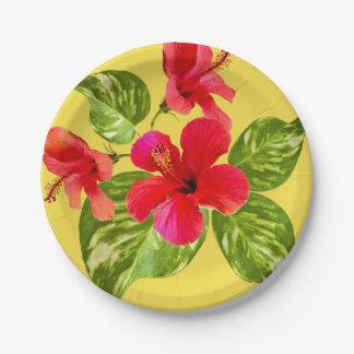 Tropischer Paradies-Papier-Teller Pappteller