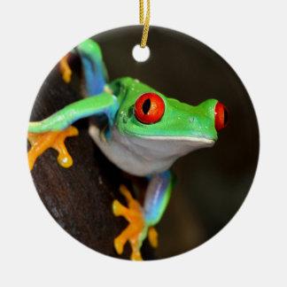 Tropischer Red Eye-Frosch - Agalychnis Callidryas Keramik Ornament