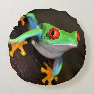Tropischer Red Eye-Frosch - Agalychnis Callidryas Rundes Kissen