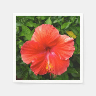 Tropischer roter Hibiskus Bonita Springs Florida Serviette
