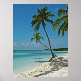 Tropisches Strand-Plakat Poster