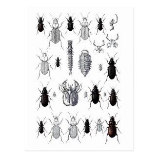 Truppe von alien postkarten