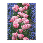 Tulipes Art-Roses de toile Toiles Tendues
