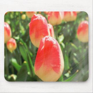 Tulpe-Himmel Mousepad