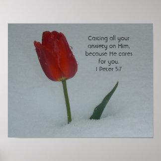 Tulpe im Schnee Poster