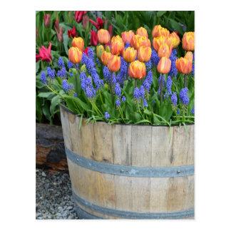 Tulpe-Pflanzerdruck des Frühlinges orange Postkarte