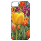 Tulpen im Brise iPhone Fall iPhone 5 Etui