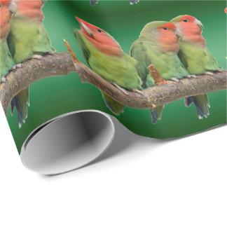 Tweeten Trio-Verpackungs-Papier Geschenkpapier