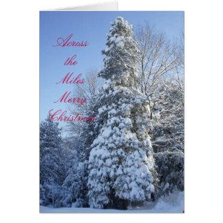 Über dem Meile-Schnee bedeckt Bäume Grußkarte