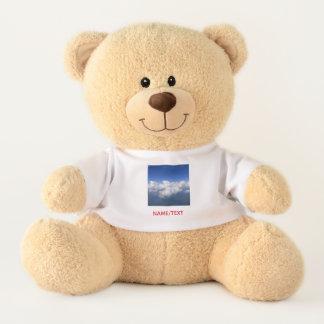 über den Wolken 03 Teddy