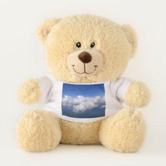 über den Wolken 03 Teddybär