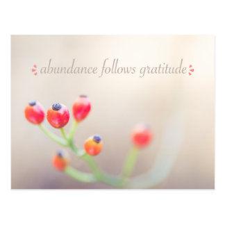 Überfluss folgt Dankbarkeits-Postkarte Postkarte