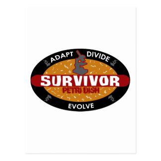 Überlebend-Petrischale Postkarte